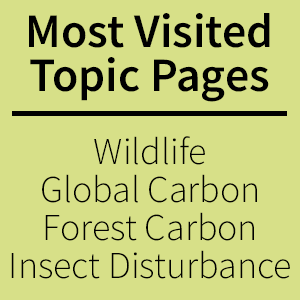 Most visited topic page - wildlife, global carbon, forest carbon, insect disturbance